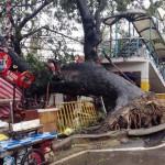 EU, typhoon Yolanda, aid.