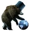 russan bear